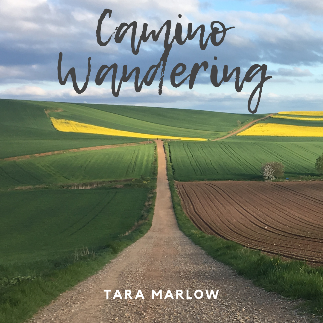 My upcoming book, Camino Wandering